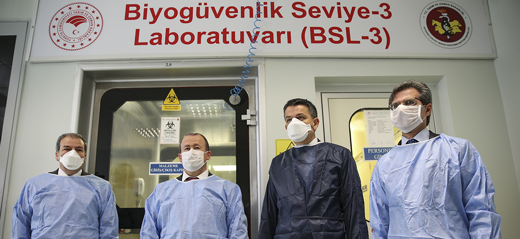 """Turkish scientists to inject isolated and inactive COVID-19 viruses into animals starting next week to produce anti-serum"""